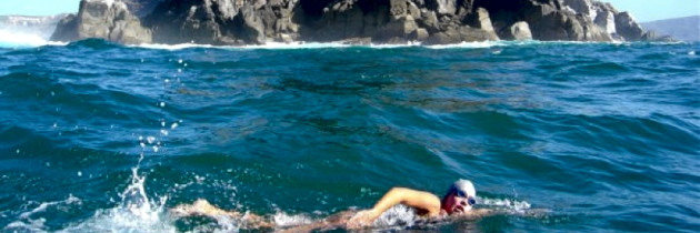 SABC News covers Carina's first Cape Point swim