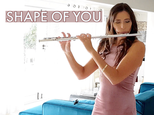 Shape Of You (Ed Sheraan) Flute Cover